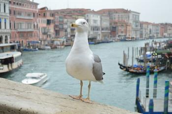 Venezia_22.jpg